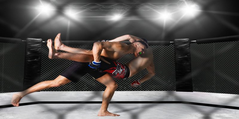 cage and 2 mma fighters